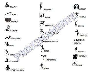 Animal Gym -