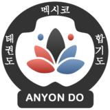 Anyondo Taekwondo - logo