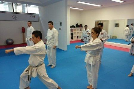 JKA Mexico Karate Do Sucursal San Nicolas Plaza Civica