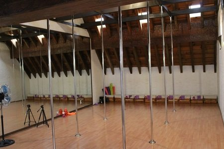 Pole Fitness Goyco Studio -