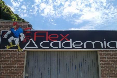 Flex Academia