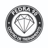 Centro De Treinamento Pedra 90 - logo
