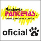 Academia Panteras - logo