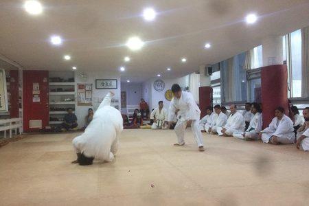 JKA Mexico Karate Do Tequexquinahuac