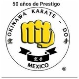 Okinawa Veracruz 2 - logo