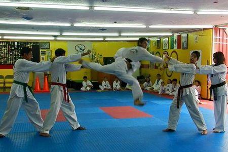 Fundación Nacional de Taekwondo. -
