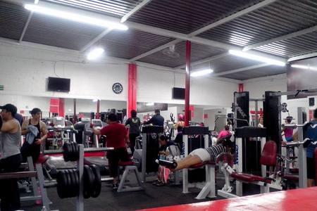 Red Body Fitness & Gym
