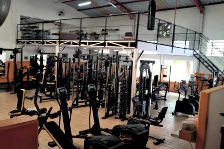 Body Athletic -