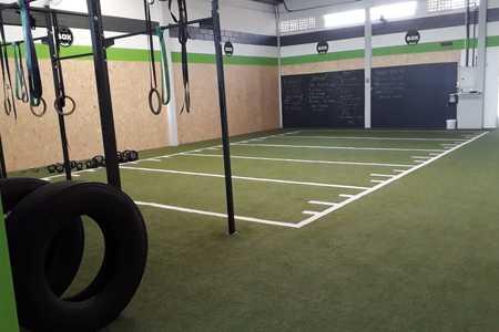 Go Up Training -