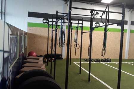 Go Up Training