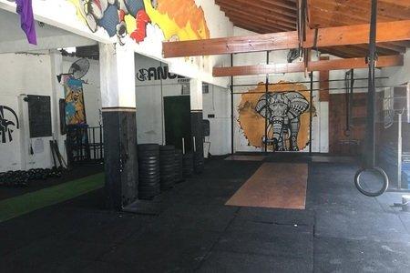 Anubis Fitness Club