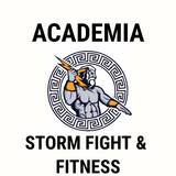 Storm Fight E Fitness - logo