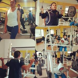 Fit Total Gym