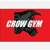 Crow Gym - logo