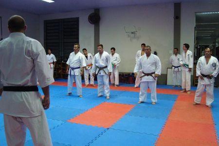 Academia Leões Dojo