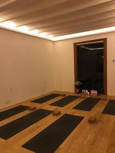 Shala Ashtanga Yoga -