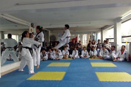 Centro Profesional de Taekwondo Neza
