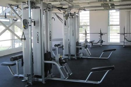 Ed and Wi Sports Gym -