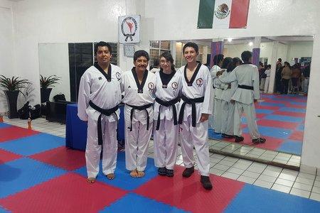 Mul do Taekwondo -