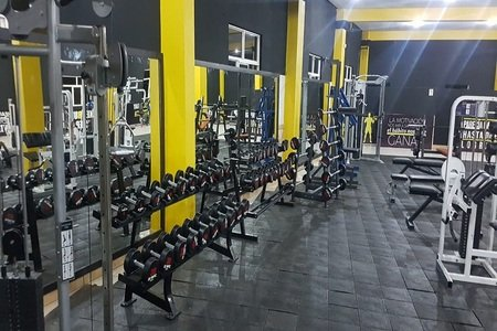 1% Muscle GYM -
