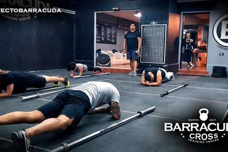 Barracuda Cross Trainning -