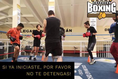 Coyoacan Boxing