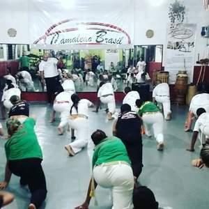 Academia Camaleão Brasil II