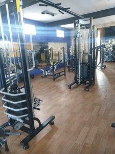 LXV fit -