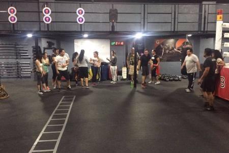 Boxingcross -