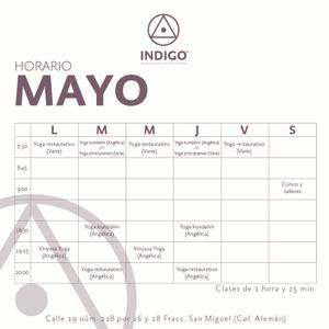 Indigo Yoga Studio and Holistic Center