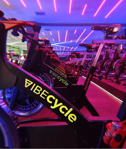 Vibecycle -