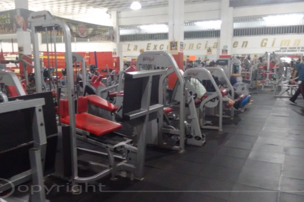 gimnasio lion s gym fitness club el manantial