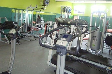 Summer Gym Academia -