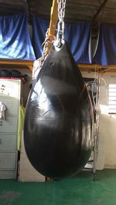 Canguros Boxing
