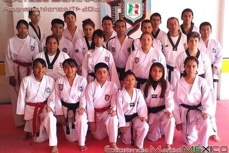 Excelencia Marcial Mexico Taekwon-do Tradicional ITF -