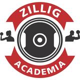 Academia Zillig - logo