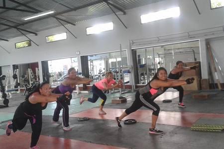 Minotauros Gym -