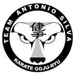 Dojo Antonio Silva - logo
