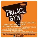 Palace Gym - logo