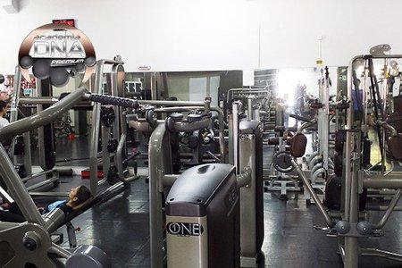 DNA Fitness Arthur Thomas -