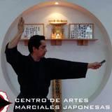 Centro De Artes Marciales Japonesas –Camj - logo