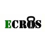 Academia Ecros - logo