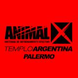 Animal X - logo
