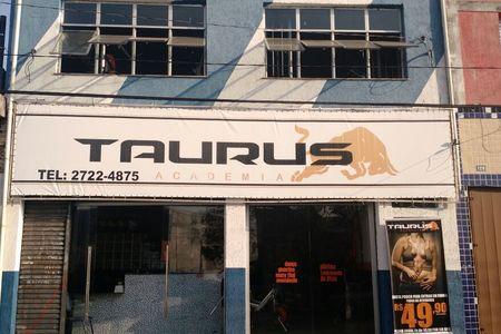 Taurus Academia -