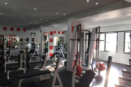Excess Gym -