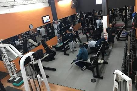 Vip Gym -