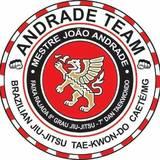 Academia Andrade - logo