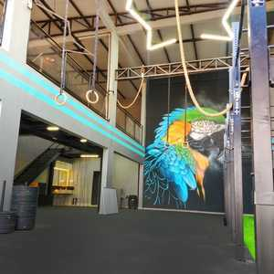 Macaw Crossfit -