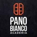 Panobianco Academia Paulicéia 2 - logo