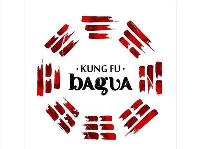 Escola Bagua Kung Fu Brasil - Sp